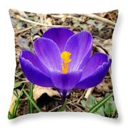 A Burst Of Purple In Springtime Throw Pillow