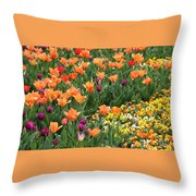 A Burst Of Spring Color Throw Pillow