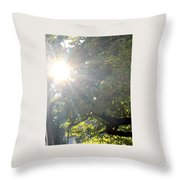 A Burst Of Sunshine  Throw Pillow