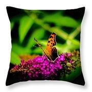 A Butterflies World  Throw Pillow
