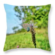 A Butterfly On A Luminous Shining Meadow Throw Pillow