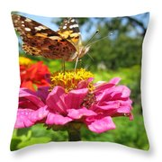 A Butterfly On The Pink Zinnia Throw Pillow