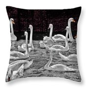 A Cacophony Of Swans Throw Pillow