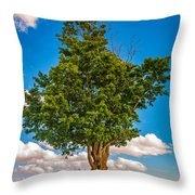 A Canadian Tree Throw Pillow