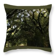 A Canopy Of Trees Throw Pillow