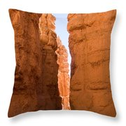 A Canyon Reflects Red Light Bouncing Throw Pillow