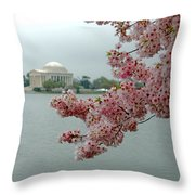 A Capital Cherry Blossom II Throw Pillow