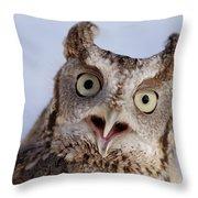 A Captive, Endangered Eastern Screech Throw Pillow
