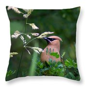 A Cedar Waxwing Facing Left Throw Pillow