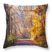 A Change Of Seasons On Forbidden Drive Throw Pillow