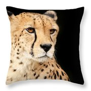 A Cheetah Named Jason Throw Pillow