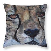 A Cheetah Throw Pillow