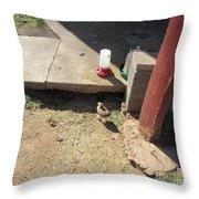 A Chick Throw Pillow