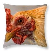 A Chicken In Burwell, Nebraska Throw Pillow