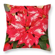 A Christmas Flower Throw Pillow