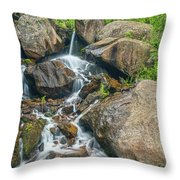 A Clarion Call For The Awareness Of The Sanctity Of Nature  Throw Pillow