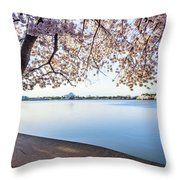 A Classic Throw Pillow