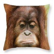 A Close Portrait Of A Sad Young Orangutan Throw Pillow