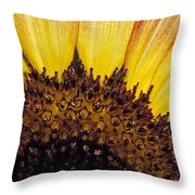 A Close-up Detail Of A Sunflower Head Throw Pillow