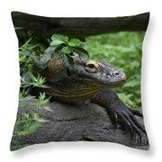 A Close Up Look At A Komodo Dragon Lizard Throw Pillow