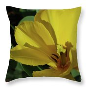 A Close Up Look At A Yellow Flowering Tulip Blossom Throw Pillow