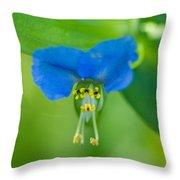 A Close-up Of A Bright Blue Flower Throw Pillow