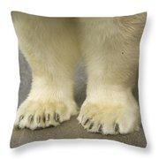 A Close-up Of A Juvenile Polar Bear Throw Pillow