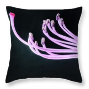 A Close Up Of The Reproductive Parts Of Throw Pillow