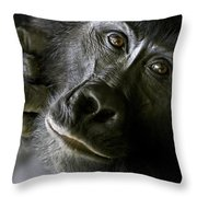A Close Up Portrait Of A Mountain Throw Pillow