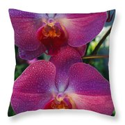 A Close View Of An Exquisite Throw Pillow