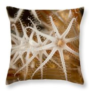 A Closeup View Of Coral Polyps Throw Pillow
