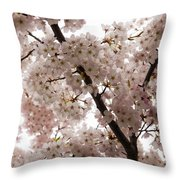A Cloud Of Pastel Pink Cherry Blossoms Celebrating The Arrival Of Spring  Throw Pillow