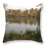 A Cloudy Day On The Pond Throw Pillow