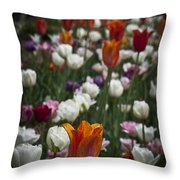 A Cluster Of Tulips Throw Pillow