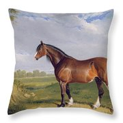 A Clydesdale Stallion Throw Pillow