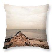 A Cold Compo Beach  Throw Pillow