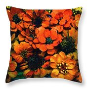 A Collation Of Brilliance Throw Pillow