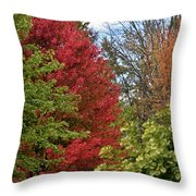 A Collection Of Fall Colours Throw Pillow