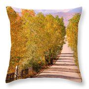 A Colorful Country Road Rocky Mountain Autumn View  Throw Pillow