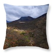 A Colorful Scene Of Burned And Lush Interspersed Foliage In The Southwest Foothills Of The Sierra Ne Throw Pillow
