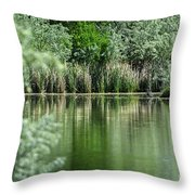 A Cool Drink Of Spring Throw Pillow