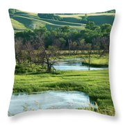 A Country Date  Throw Pillow
