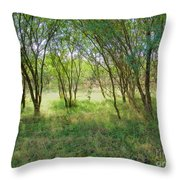 A Country Morning Throw Pillow
