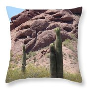 A Couple Of Cacti In Phoenix Throw Pillow