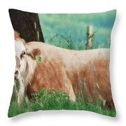 A Cow's Tale - Lazy Day Throw Pillow