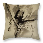 A Crack In The Dam Throw Pillow