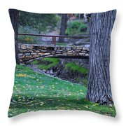 A Creek Runs Through It Throw Pillow