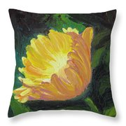 A Cup Of Sunlight Throw Pillow