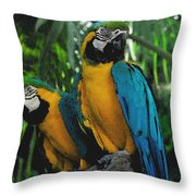 A Curious Pair Throw Pillow