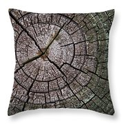 A Cut Above - Patterns Of A Tree Trunk Sliced Across Throw Pillow